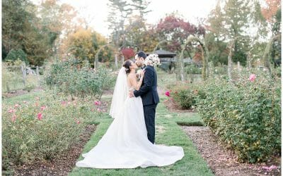 Romantic Garden Wedding | Molly & Larry